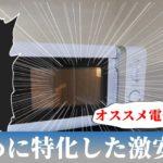 【レビュー】電子レンジ「YAMAZEN MRB-207」を使ってみた感想、評価。温めるだけに特化したオススメ品!